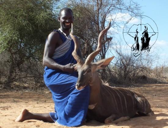 lesser kudu hunting1 Tanzania