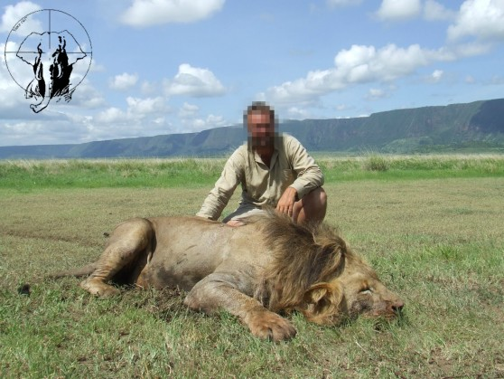 Lion black mane trophy Tanzania